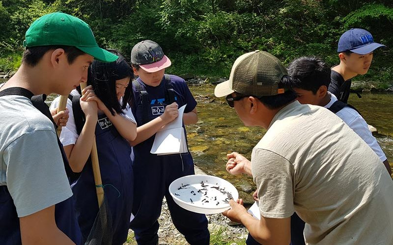 Do an ecological study on all of the wildlife in the area